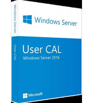 Microsoft Windows Server 2016 Standard/Datacenter Edition 1 User CAL (OEM)